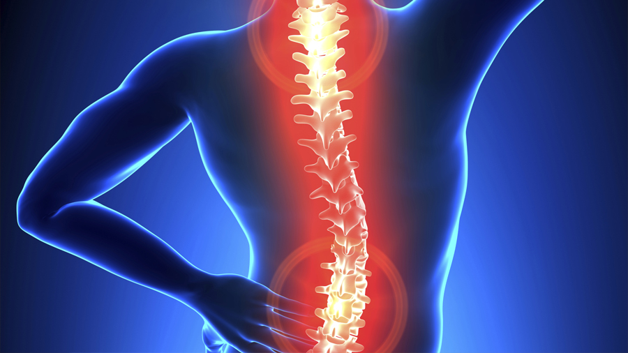 hotel software Hospitality Focus on Safety:  Musculoskeletal Disorders